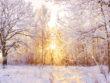 Bien-vivre l'hivers - Conseils de médecine chinoise